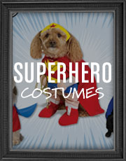 Halloween Superhero Costumes