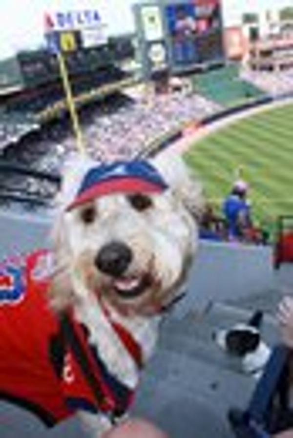Atlanta Braves Baseball Dog Jersey Red Baxterboo