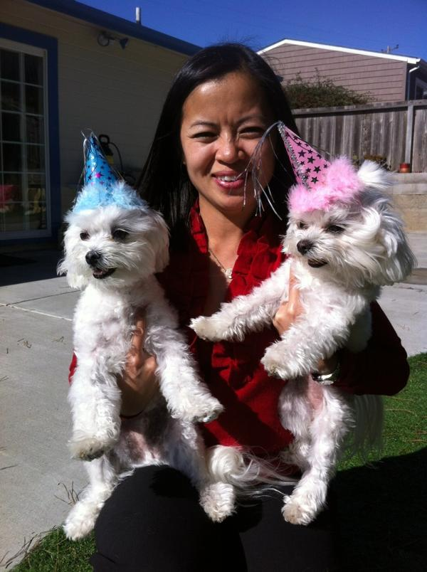 Puppy Party Hats - Blue