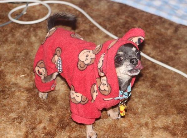 Silly Monkey Fleece Hooded Dog Pajamas by Klippo - Red