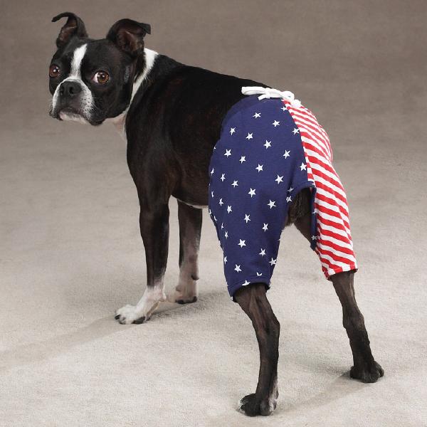 All-American Shorts