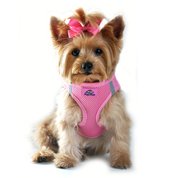 American River Choke Free Mesh Dog Harness - Candy Pink