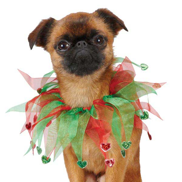 Aria Holiday Heart Scrunchies for Dogs