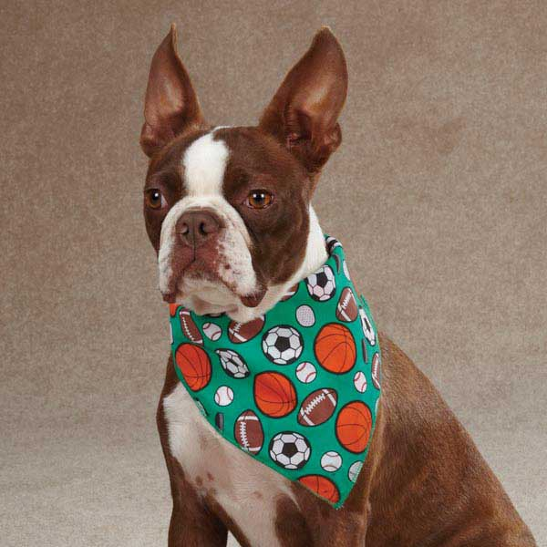 Aria Sports Hound Dog Bandana -  Green