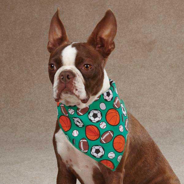 Aria Sports Hound Dog Bandana -  Green