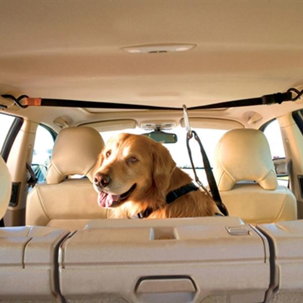 Auto Zip Line with Dog Leash by Kurgo