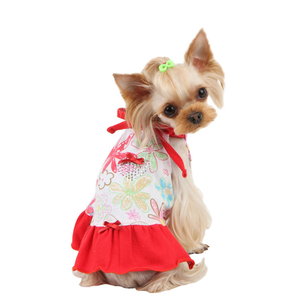 Babe Dog Dress by Pinkaholic - Red