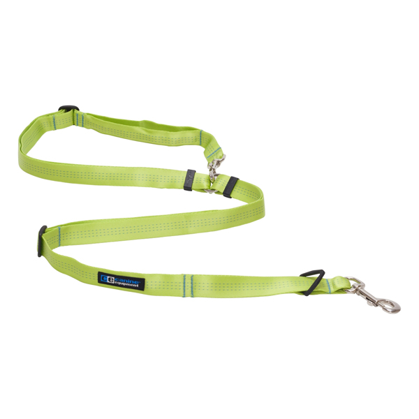 Beyond Control Dog Leash - Lime