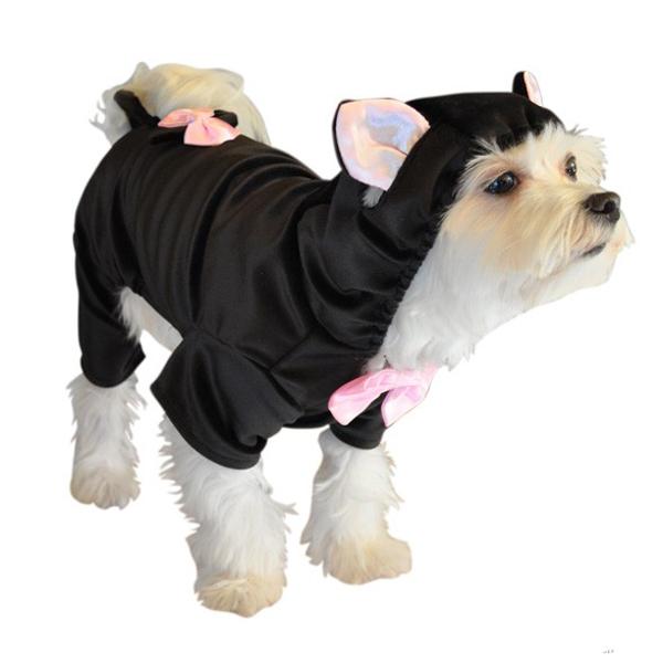 black cat halloween dog costume baxterboo. Black Bedroom Furniture Sets. Home Design Ideas