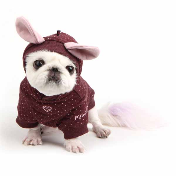 Blossom Dog Hoodie by Pinkaholic - Brown