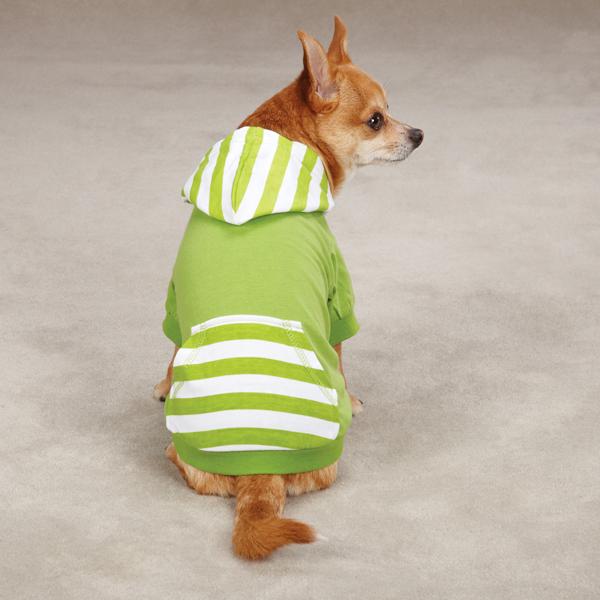 Brite Stripe Pullover Dog Hoodie - Parrot Green