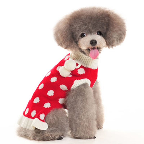 Bubble Dot Dog Sweater Dress by Dogo - Red