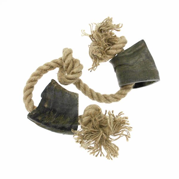 Bully Horns with Rope Dog Toy