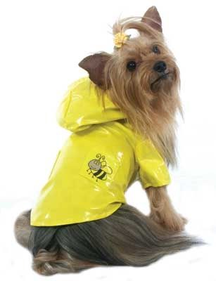 Bumble Bee Raincoat - Yellow