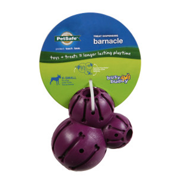 Busy Buddy Barnacle Dog Toy