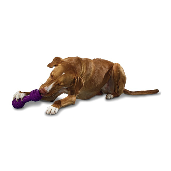 Busy Buddy The Chuckle Dog Toy