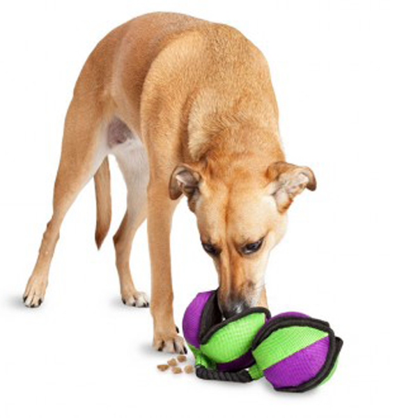 Busy Buddy Rip 'n Tug Barbell Dog Toy
