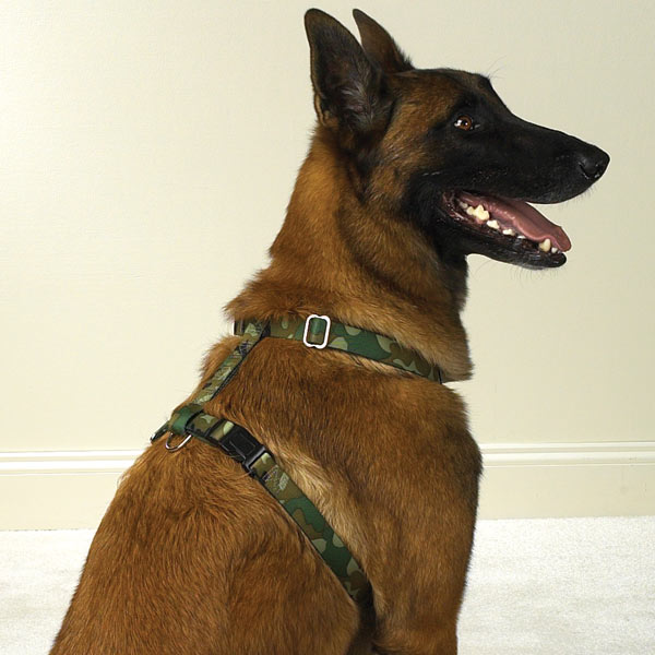 Guardian Gear Camo Dog Harness - Green