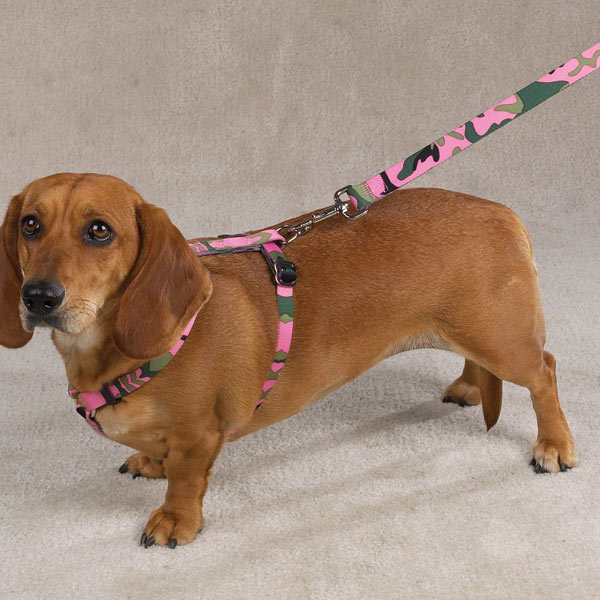 Guardian Gear Camo Dog Harness - Pink and Green