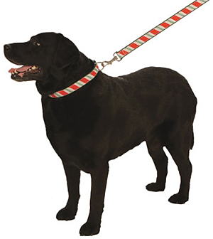 Candy Cane Christmas Holiday Ribbon Leash