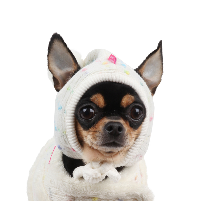 Candy Mist Dog Hat by Pinkaholic - Ivory