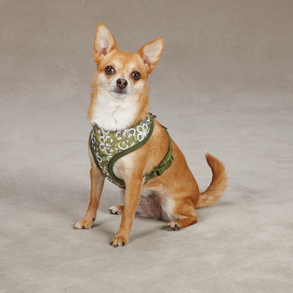 Carolina Collection Dog Harness - Green