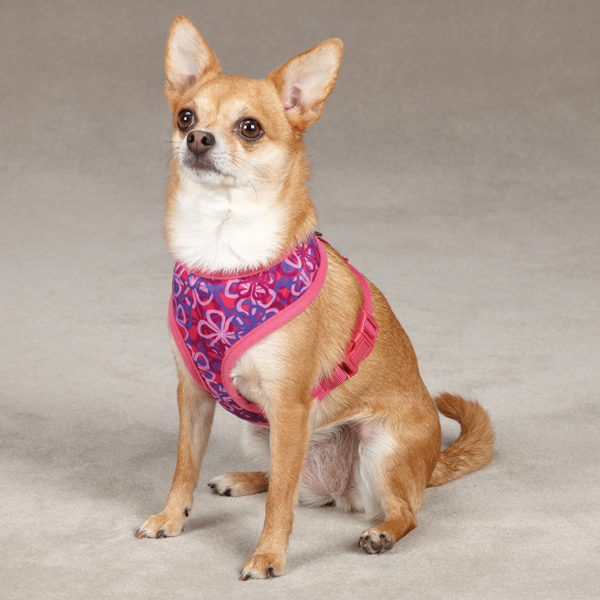 Carolina Collection Dog Harness - Raspberry