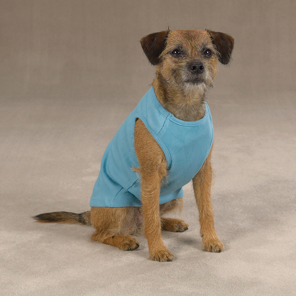 Casual Canine Basic Ribbed Dog Tank Top - Air Blue