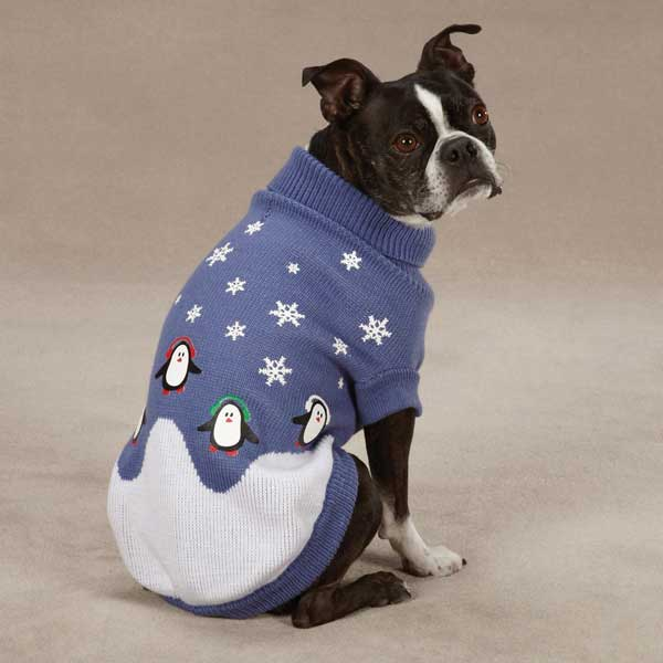 Casual Canine Blizzard Buddies Dog Sweater