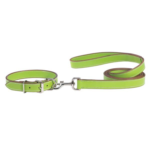 Casual Canine Flat Leather Leash - Parrot Green