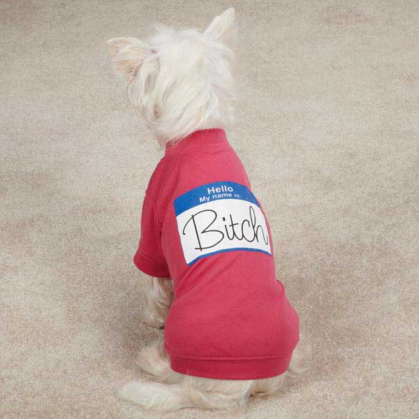 Casual Canine Hello My Name Is...Dog T-Shirt - Raspberry