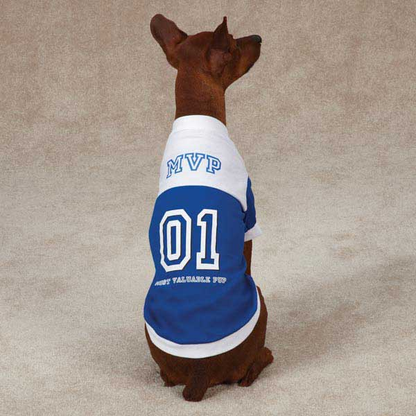 MVP Dog T-Shirt - Blue