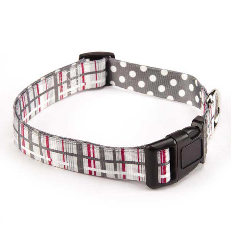 Rad Plaid Dog Collar - Charcoal