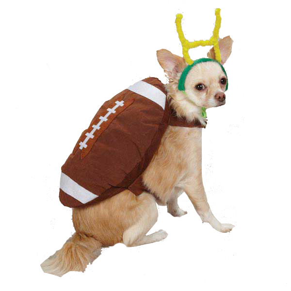 Casual Canine Touchdown Hound Dog Costume