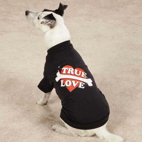 Casual Canine True Love Dog T-Shirt - Black