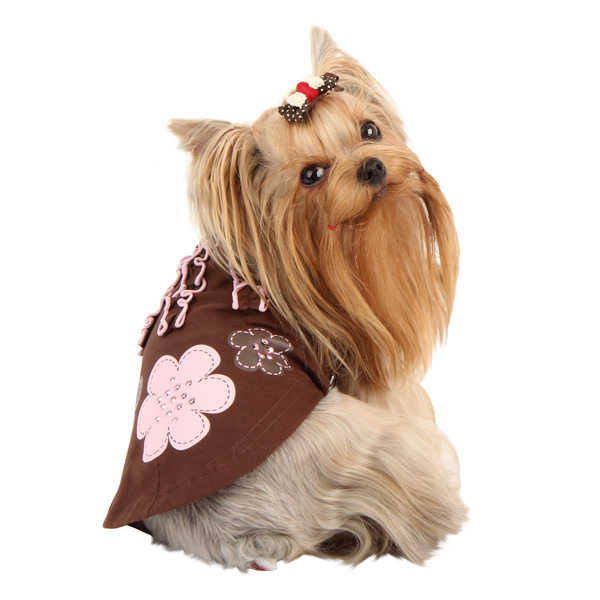 Choco Mousse Dog Shirt by Pinkaholic - Brown