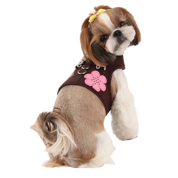 Choco Mousse Pinka Dog Harness by Pinkaholic - Brown