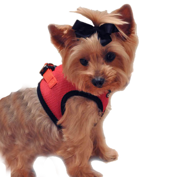 Choke-Free Mesh Step-In Dog Harness - Flame Red