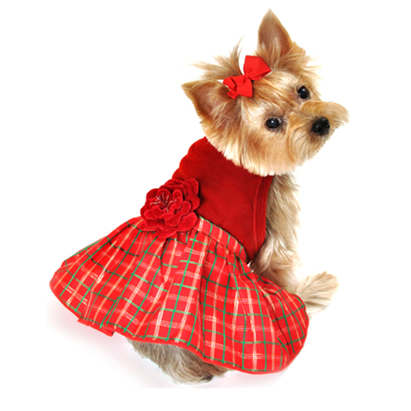 Dog Christmas Dress pictures