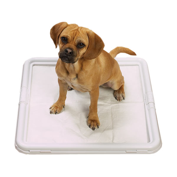 ClearQuest Puppy Pad Holder