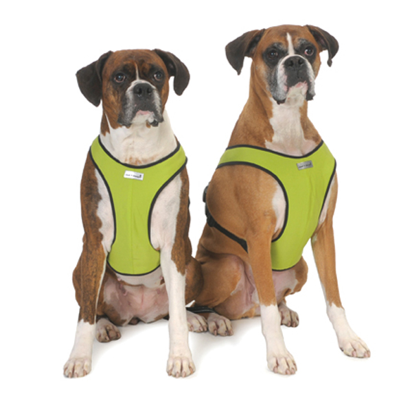 Cloak & Dawggie Snap-N-Go Dog Harness - Citron Green with Black Fleece Trim