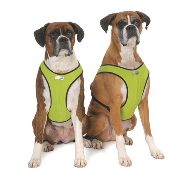 Cloakdawggiesnaodogharnesscitrongreenwithblackfleecetrim1rhs3amazonaws: Large Dog Harness At Elf-jo.com