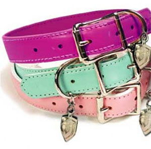 Coachdog Pink Leather Dog Leash