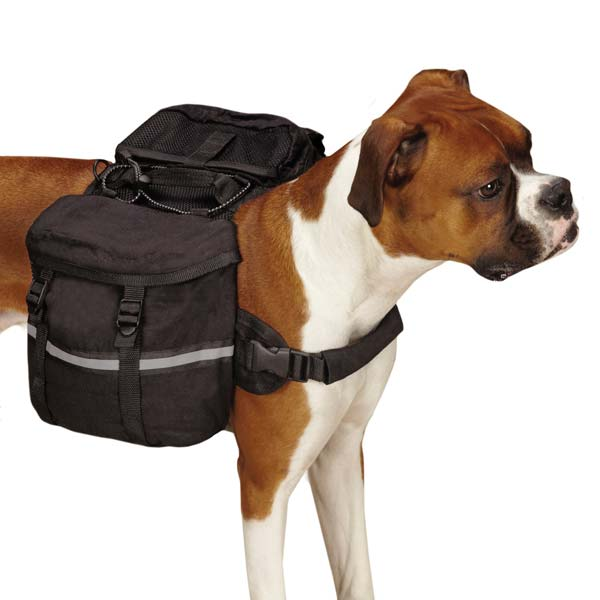 Cotton Duck Day Tripper Dog Backpack - Black