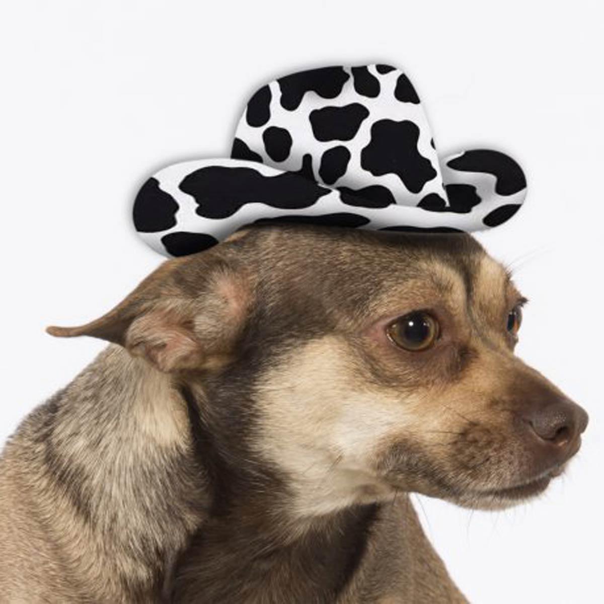 Large Dog Cowboy Hat