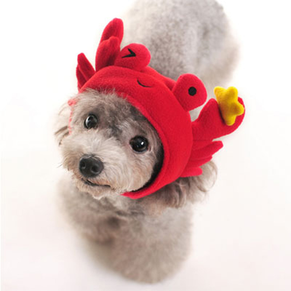 Crab Dog Hat by DOGO