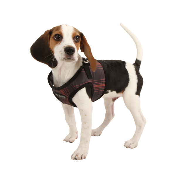 Cyberspace Dog Harness by Puppia - Black