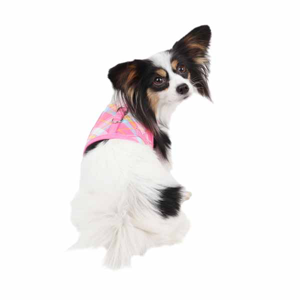 Dainty Pinka Dog Harness by Pinkaholic - Pink