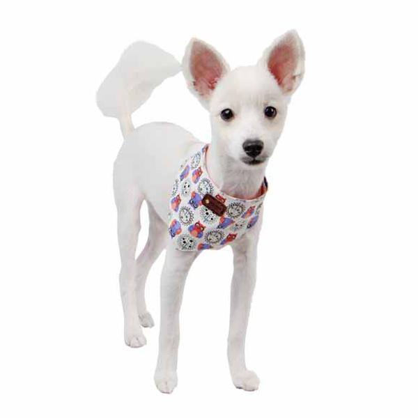 Dawning Scarf Dog Collar - Ivory