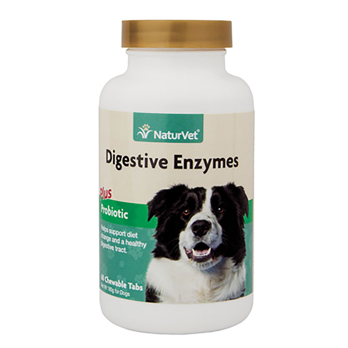 Natural Food Sources Of Digestive Enzymes For Dogs